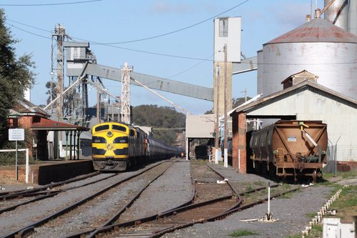 El Zorro grain services passes the yard and silos at Dunolly station