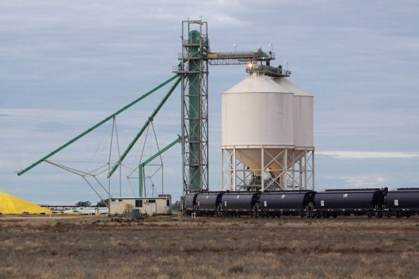 Loading silos at Birchip: the bulk grain storage is all in ground stockpiles