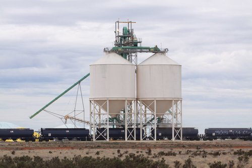Loading silos at the Birchip GrainFlow terminal