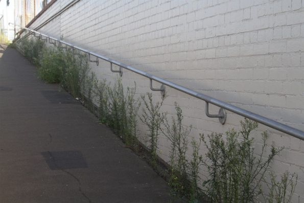 Grass growing along the ramp to South Kensington station