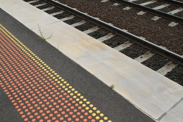 Plants grow in the cracks at Footscray platform 3