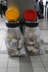 New rubbish bins on the concourse, about to overflow with crap