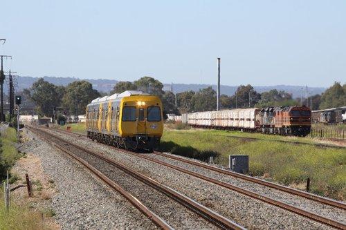 TransAdelaide railcar overtakes the SCT train