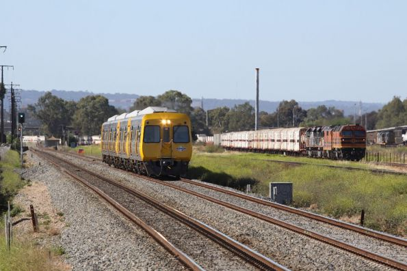 A 4-car Comeng 3000/3100 class lashup parallels the SCT train near Kilburn station and the Adelaide Freight Terminal