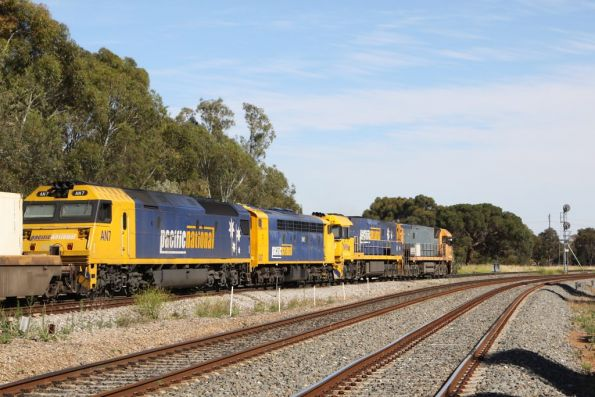 Almost at their destination of the Adelaide Freight Terminal, the PN freight runs through Torrens Junction