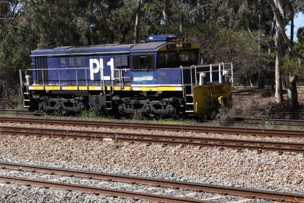 With the ARTC controller receiving the release from TransAdelaide, PL1 approaches the grade crossing at Torrens Junction