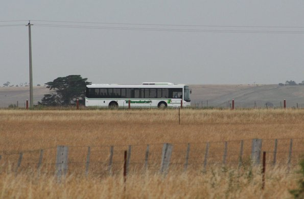 Benders low floor bus runs through the countryside of Forest Road on route 12  to Lara