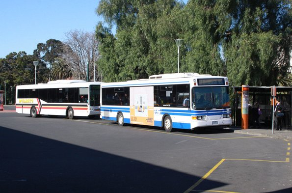 Pair of McHarry's buses at Geelong station