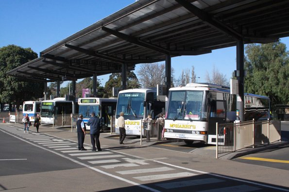 Lineup of buses at Geelong station