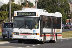 McHarry's #51 1551AO with a route 45 service on Church Street, Geelong West