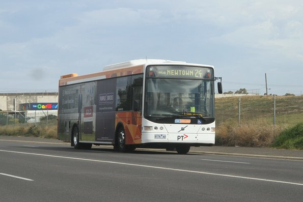 Geelong buses