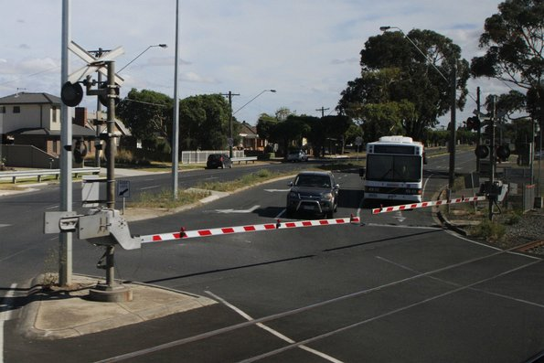 CDC Geelong bus #98 0500AO waits at the North Shore Road level crossing