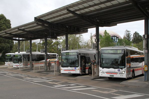 McHarry's buses at Geelong station