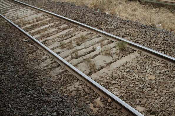 Grass grows in a mud hole in the V/Line tracks at North Geelong