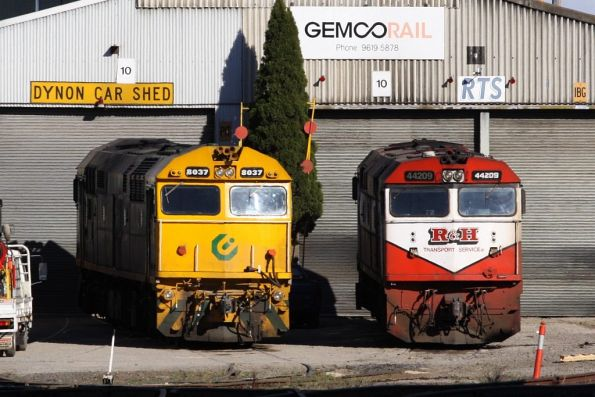Coote liveried 8037 and R&H Transport liveried 44209 stabled outside the RTS shed at Dynon
