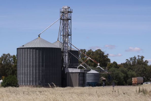 Modern grain silos on the NSW side of the station yard at Tocumwal