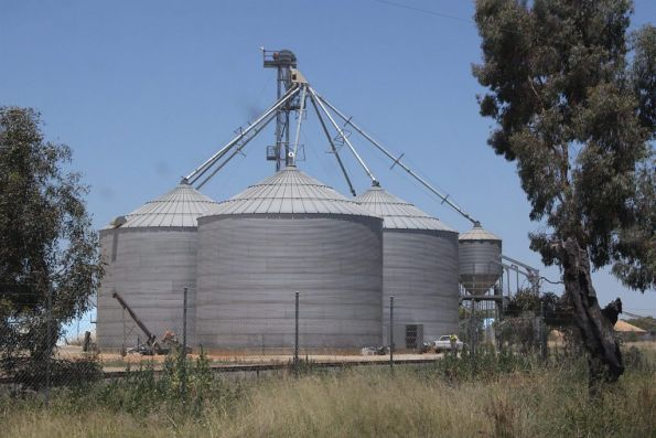 One of three grain silos at Tocumwal: but the only one to be served by broad gauge tracks