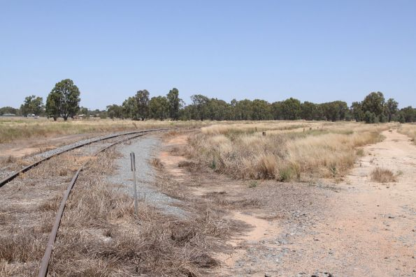 Looking back to Tocumwal station from the broad gauge grain silos