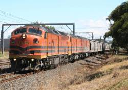 CLP17 and another 2 classmates on the up with a G&W grain at Werribee