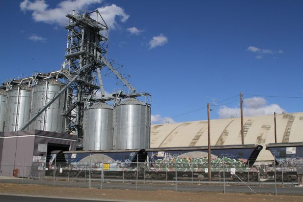 AHAY grain hoppers at the Geelong Grain Loop