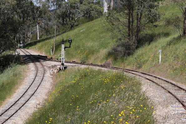 Kerrisdale Mountain Railway