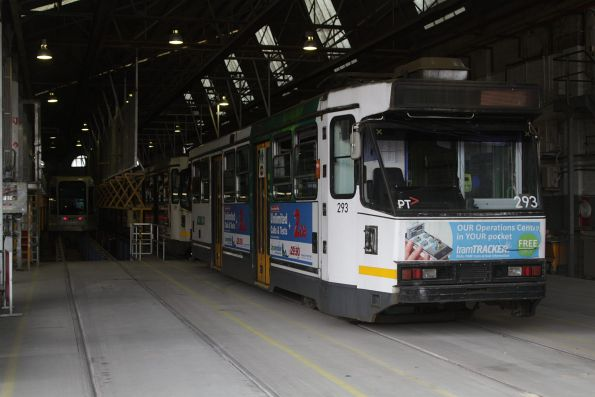 A2.293 leads a row of stabled trams in the shed at Kew Depot