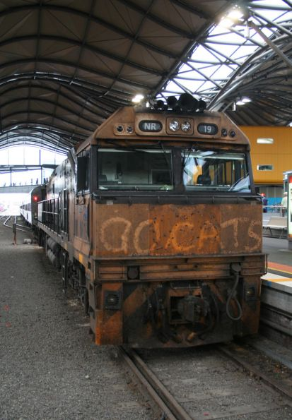 'Go Cats' in the grime on NR19 at Southern Cross