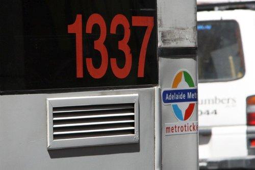 Torrens Transit bus #1337