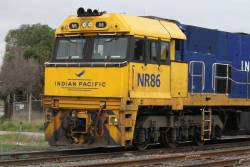 Indian Pacific liveried NR86