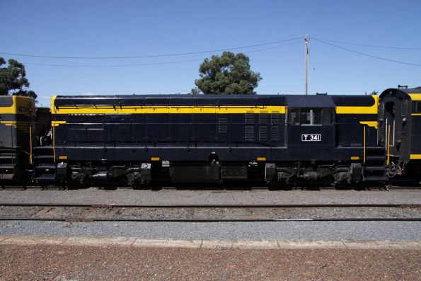 T341 at Maryborough in fresh VR paint