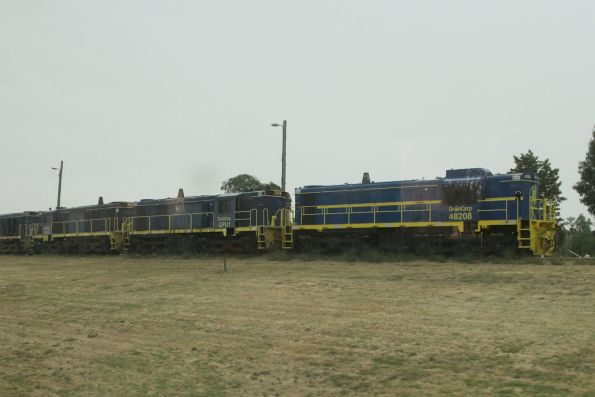 GrainCorp locomotives 48208, GPU1 and GPU2 stabled at the Junee Roundhouse