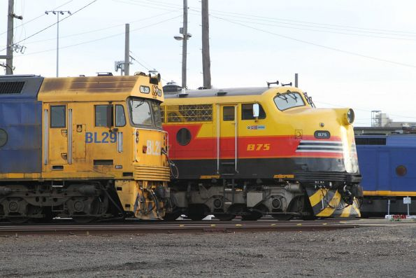 Pacific National BL29 alongside SSR B75 at South Dynon