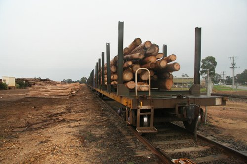 Loaded log flats at Bairnsdale
