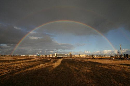 Twin rainbows over the empty log wagons at North Shore