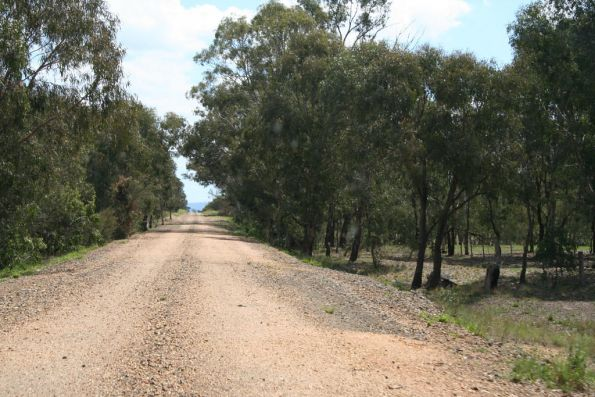 Along the line near Heyfield-Upper Maffra Road at Tinamba