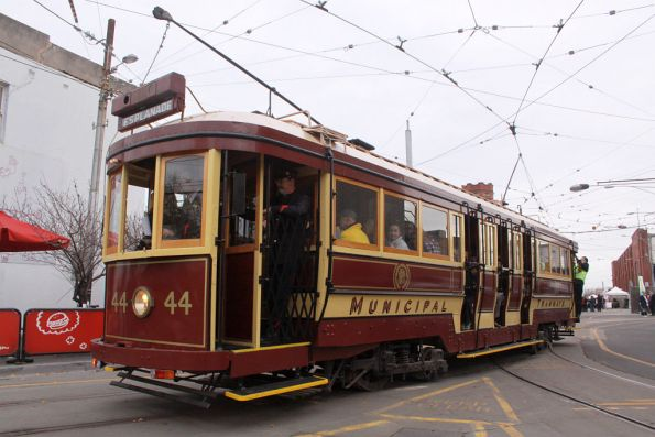 Tram 44 heads out onto Glenferrie Road for another public run