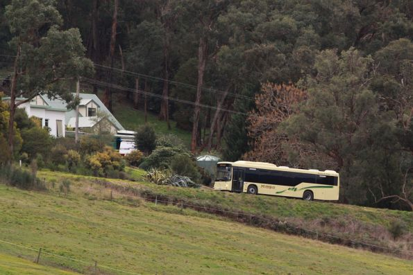 McKenzie's bus low floor bus runs above the Healesville line bound for Yarra Glen