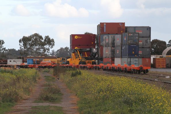 TQXF container wagons on standard gauge at the Qube depot in Altona North