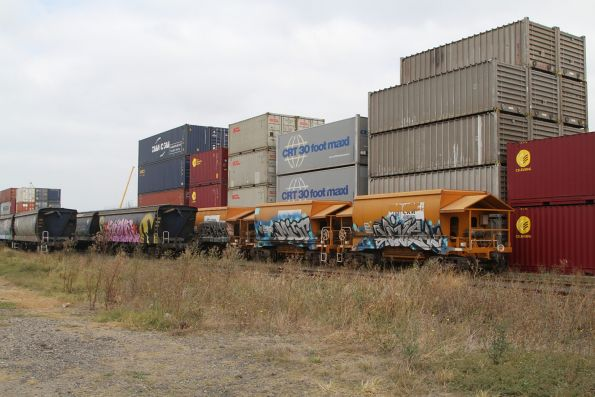 Standard gauge PHAY hopper wagons beside two rakes of CFCLA grain hoppers at the Qube depot in Altona North