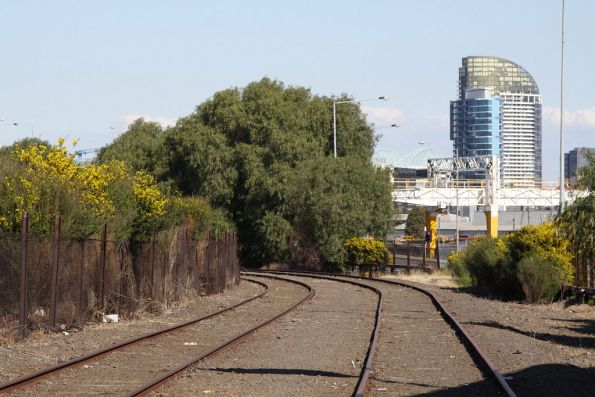 Outside Goods Lines beside the CityLink freeway at Spion Kop, looking back towards West Tower