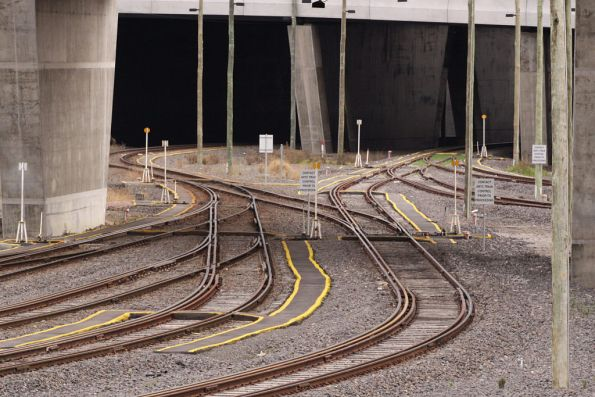 Tangle of dual gauge pointwork at the up end of the Appleton Dock sidings