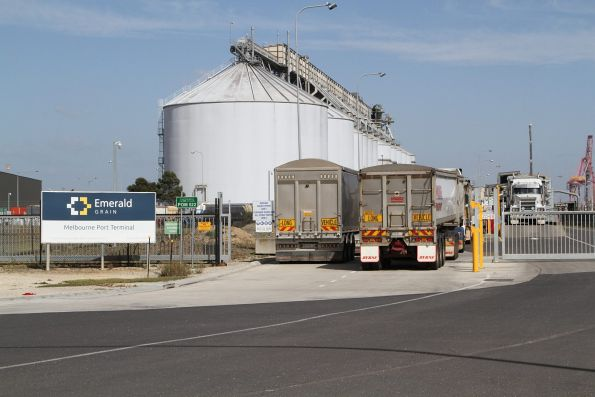 Queue of grain trucks at the Emerald Grain terminal at Appleton Dock