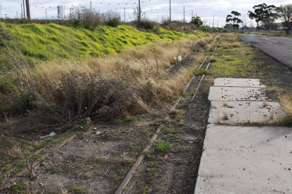 Another dual gauge track in the Alauda Sidings