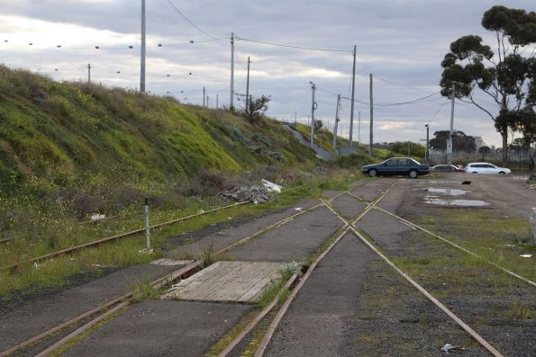 Down end of the Alauda Sidings: the points form the end of the broad gauge loop, the tracks continue as a headshunt