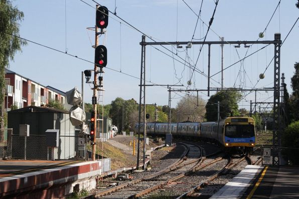 Flemington Racecourse Train