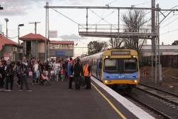 EDI Comeng arrives into Showgrounds station with a Royal Melbourne Show special