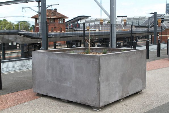 Planter box on Irving Street above Footscray station