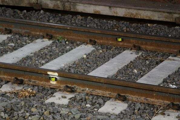 Surveying markers affixed to the tracks at Glenferrie station