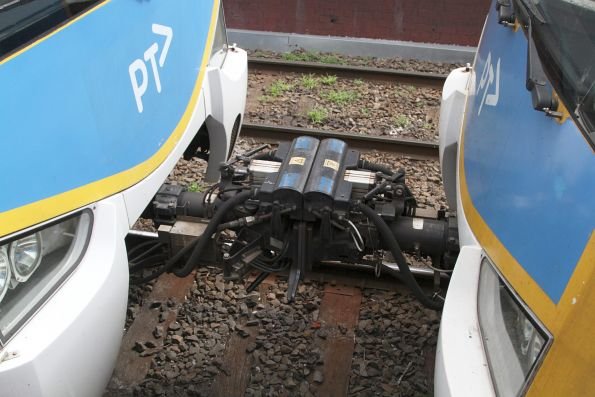 Dellner coupler between two Siemens train sets