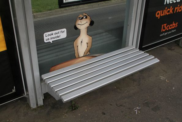 Meerkats star on the Royal Children's Hospital tram stop